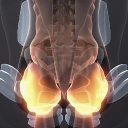 芦屋美整体 骨盤プロリセットエアー 05 美整体ストレッチ 骨盤周りから背中の筋肉を心地よくストレッチし、美姿勢を目指せます。 ※イメージ