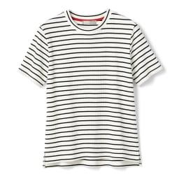 スビンギザコットン ワイドリブ 半袖 Tシャツ (ウ)オフホワイト×ブラックボーダー