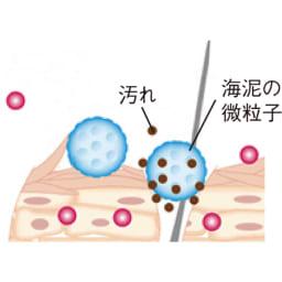 海泥マッドテラピー トライアルセット 海泥の働き:軟質多孔性の微粒子が、毛穴の奥の汚れや老廃物を吸着。毛穴詰まりを防いで地肌をきれいにします。