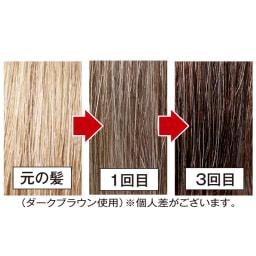 「利尻」ケアシリーズ 白髪かくし 20g 利尻 白髪かくし3つのポイント【3】 使うほどに色づく!色落ちしにくい!(※2)