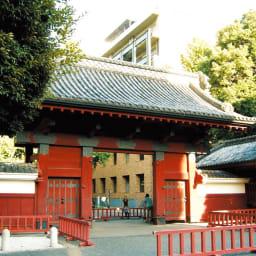 ハイ・ユーグレナ 360粒 東京大学内に研究所が設けられています。