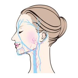 TSUDA SETSUKO T'sクレンジングウォッシュジェル 100g 3ポイントへ向けて流れを集めます。(1)耳珠(耳の穴の前)(2)耳垂(耳たぶ)(3)マンディブラーノッチ(あごの骨の角から1cmほど内側にある骨のくぼみ)