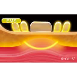 キャビスパ360(サンロクマル) 本体 【筋肉のより近くからアプローチ】 『キャビスパ360』には、低周波と高周波の複合EMSを搭載。肌に押し当てながら使い、電気刺激を届けることで、よりピンポイントに効果的に、筋肉を引き締めます。
