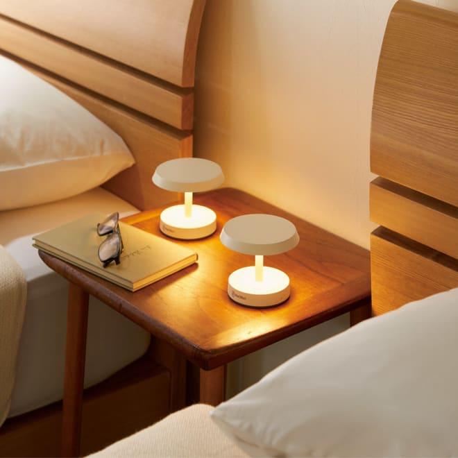 充電式LEDライト ラウンジタイプ コーディネート例