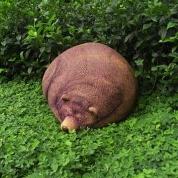 クマのビーズクッション 大 イメージカットです。屋外での使用はおやめください