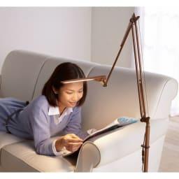 フロア型読書灯 LEDエグザーム DIVA (イ)ブラウン シェードの角度とアームの位置を調節するだけ。好みの位置でLEDライトを照射できます。