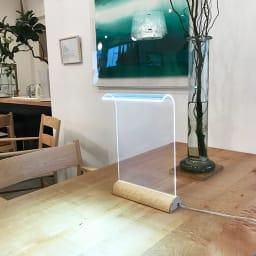 LEDデスクライト Glowide 木目タイプ コーディネート例(イ)バーズアイメープル