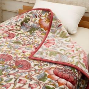 モリスギャラリーアクリルニューマイヤー毛布〈ロデン〉 写真