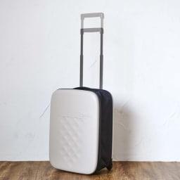 ROLLINK 薄くたためるスーツケース容量40L/機内持ち込みサイズ (イ)グレージュ系 ハンドル高さ95cm・105cmの2段階調整