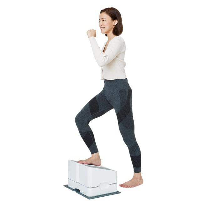 AEROLIFE/エアロライフ ツインステップス 脚上げ力が弱まっていると感じているなら、ぜひ『ツインステップス』を使った昇降運動にチャレンジを。