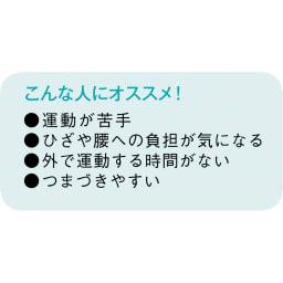AEROLIFE/エアロライフ モーションナビ