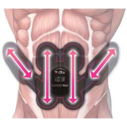 TBC スレンダーパッド(ボディ用) 本体 筋繊維の方向に合わせて効率的な筋肉運動をサポート。※イラストはイメージ