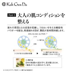 江原道 モイスチャーファンデーション デビュー特別セット