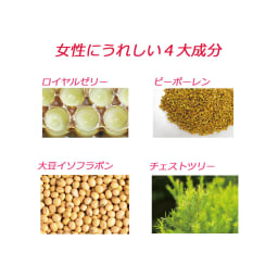 クイーンシルエット(500mg×90粒) ロイヤルゼリー、ビーポーレン、新たに大豆イソフラボン、チェストツリーを加えた4大美容成分を独自比率で配合。