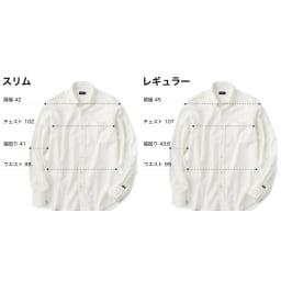 SCENE(R) 7DAYS ジャパンメイドシャツシリーズ 綿麻ストライプ