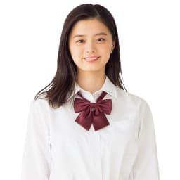 形態安定 長袖シャツ (ア)ホワイト 着用例