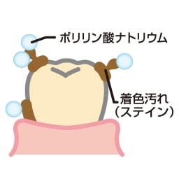 ビクトリアローズ ホワイトローズ ティースジェル(医薬部外品) 60g お得な2本組 【ホワイトニングのメカニズム】ポリリン酸ナトリウムは歯面に付着したステインを歯から剥がして、歯の表面をきれいにします。