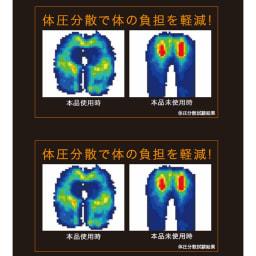 GEL 骨盤円座クッション ハネナイト(R)