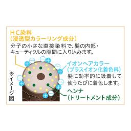 Motto ボタニカラー(ヘンナ配合)ポンプ式 シャンプー(300ml)&トリートメント(300g)