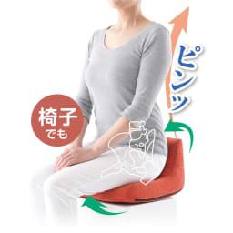 骨盤バランス オッコス(OKKOSU) 骨盤を楽に起こして、姿勢もキレイ♪ ※お届けの色はブラウンとなります。