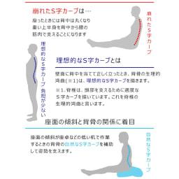 姿勢ケアフレックスクッション 壁面に背中を当てて正しく立ったとき、背骨が理想的なS字カーブを描いた姿勢になります。