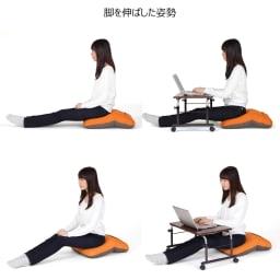 姿勢ケアフレックスクッション 脚を伸ばした姿勢でS字カーブをサポート。