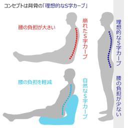 産学連携 あぐら座椅子 開発コンセプトは背骨の「理想的なS字カーブ」の追求。