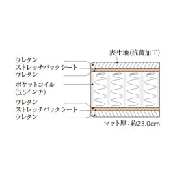 Simmons シモンズ カーブガス圧収納ベッド 5.5インチ レギュラーマットレス(RG) マット断面図
