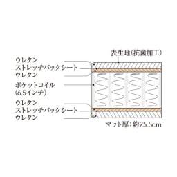 Simmons シモンズ カーブ縦開きガス圧収納ベッド 6.5インチ ゴールデンバリューマットレス(GV) マット断面図
