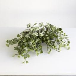 CT触媒加工シェルフプランツ [人工観葉植物・インテリアグリーン] ベゴニア&フロストアイビー