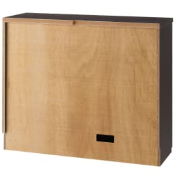 ダイニングテーブルから見やすいハイタイプテレビシリーズ  薄型キャビネット3枚扉  幅89.5cm (背面)
