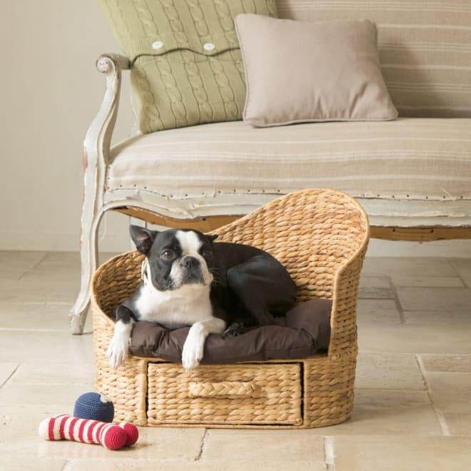 収納付きペットカウチ (ペット用ソファ・犬猫兼用) 幅49奥行33高さ39cm かわいいわんちゃんの定位置として。専用のクッション、下には引出し付きです。おもちゃなどの収納にお使いください。