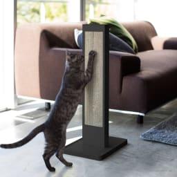 猫の爪とぎスタンド タワー 使用イメージ(イ)ブラック