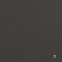つっぱりロールスクリーン遮光タイプ (ウ)ダークグレー