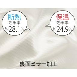 トリコットレースカーテン 幅100cm(2枚組) 生地の裏面に光沢糸がでる構造により、昼間外から中が見えにくいミラーレース。 ※ミラー試験は白地の部分で計測 (一財)日本繊維製品技術センター調べ(生地試験データ)