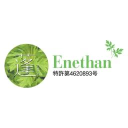 エネタンピローフェミニン(枕カバー付き) エナタンフォームは、国産の天然よもぎが入った特許素材です。※特許第4620893号