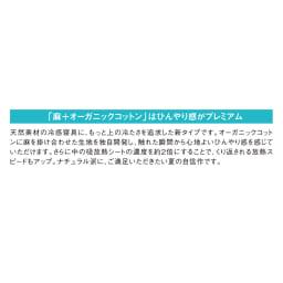 【2018年モデル】ナガークールシリーズ 麻+オーガニックコットン平織り ケット