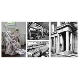 【西川産業(東京西川)】Sanderson/サンダーソン 羽根枕(ピローケース1枚付) 憧れの英国インテリアブランド・サンダーソン