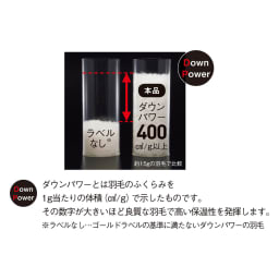 京都西川 特選2層式羽毛布団 増量タイプ 厳選したダウンパワー400cm3/g以上の高品質なフランス産ホワイトダックダウンをたっぷり使用。