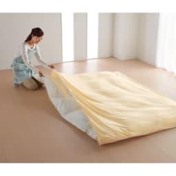 布団を包めるなめらか毛布シリーズ 枕カバー(同色2枚組) [色見本](イ)アイボリー ※お届けは枕カバーです。