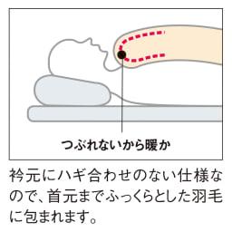 バーゲン寝具シリーズ 羽毛布団(羽毛増量タイプ) シングルロング 首元までぽかぽか