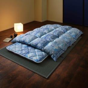 バーゲン寝具シリーズ お得な掛け+敷きセット ライトタイプ 写真