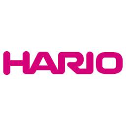 HARIO/ハリオ 茶茶急須 禅 300ml