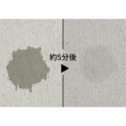 KAWAKI/カワキ モイストレイ付き まな板スタンド