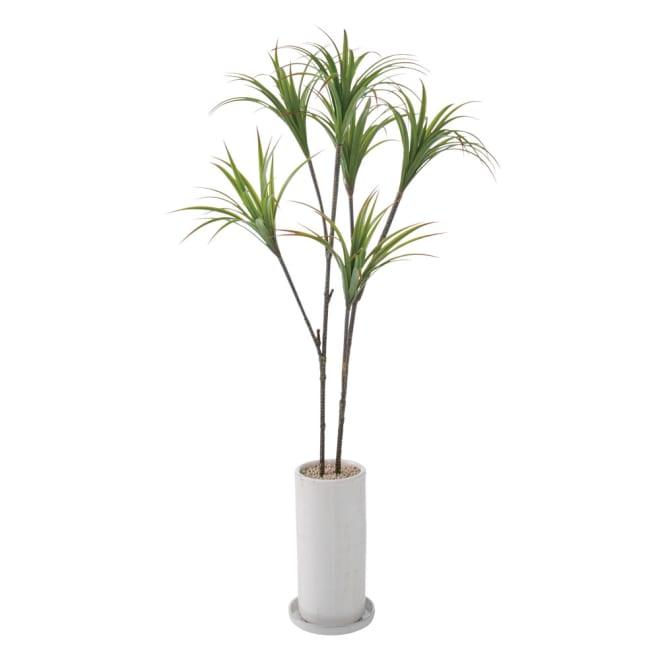 インテリアグリーン(エコストーン入り) ドナセラ ホワイト