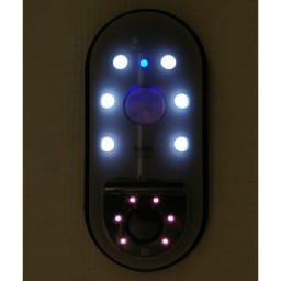玄関やロッカーの防犯対策にもなるリーベックスmicroSD記録式センサーカメラ 【電池&SDカードセット品】 明暗センサーで自動点灯。夜間撮影をより鮮明にするLEDライト機能(ON/OFFスイッチ付)