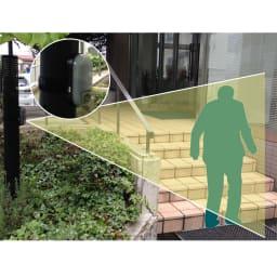 玄関やロッカーの防犯対策にもなるリーベックスmicroSD記録式センサーカメラ 【電池&SDカードセット品】