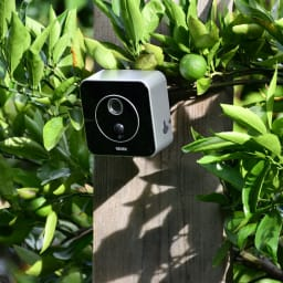 リーベックス液晶画面付きセンサーカメラ