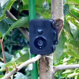リーベックス 耐水仕様 センサーカメラセット