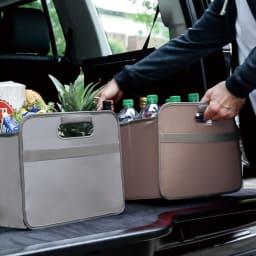 meori 収納BOXホームコレクション Lサイズ ピクニックやアウトドアに。